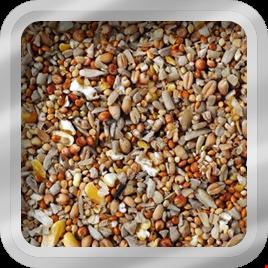 Mix semințe