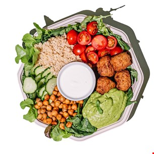 Falafel & Quinoa Plate